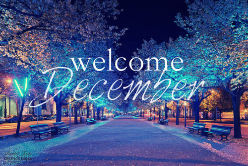 Important days of December