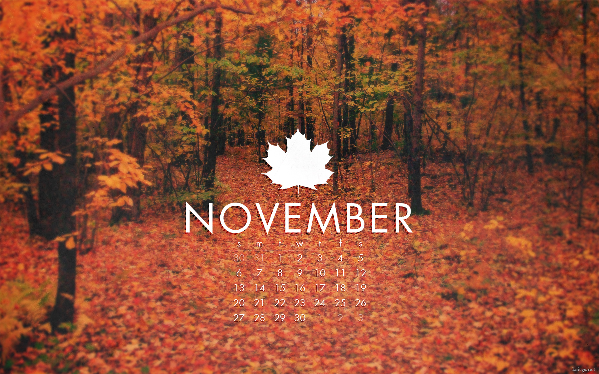 Important days of November